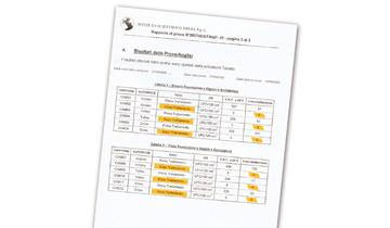Mondial Vap 7000 Inox - efficacia certificata