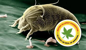 Vaporetto Smart 30_R contro allergie